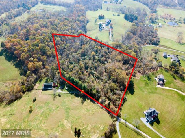 Not On File, Purcellville, VA 20132 (#LO10096771) :: Pearson Smith Realty