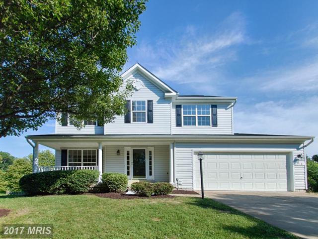 516 Rosemary Lane, Purcellville, VA 20132 (#LO10097203) :: Pearson Smith Realty