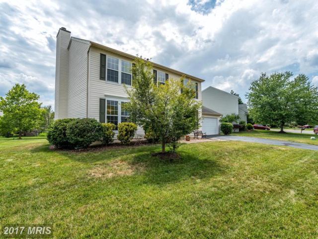 20727 Fenwick Drive, Ashburn, VA 20147 (#LO10098393) :: Wicker Homes Group