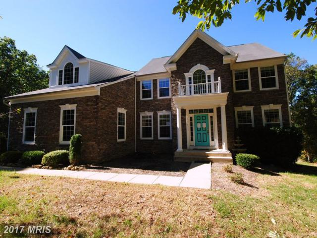 17249 Grand Valley Court, Round Hill, VA 20141 (#LO10098460) :: LoCoMusings