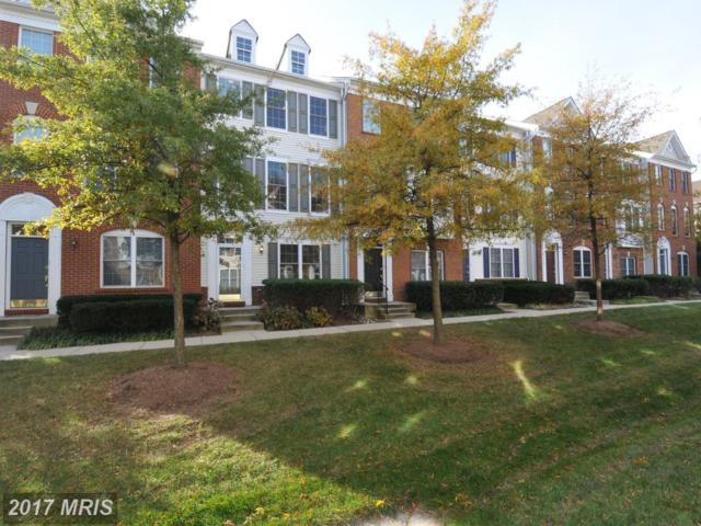 42770 Kearney Terrace, Chantilly, VA 20152 (#LO10103133) :: The Hagarty Real Estate Team