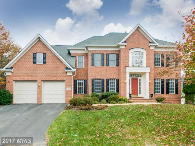 43556 Calamus Creek Court, Leesburg, VA 20176 (#LO10103149) :: Labrador Real Estate Team