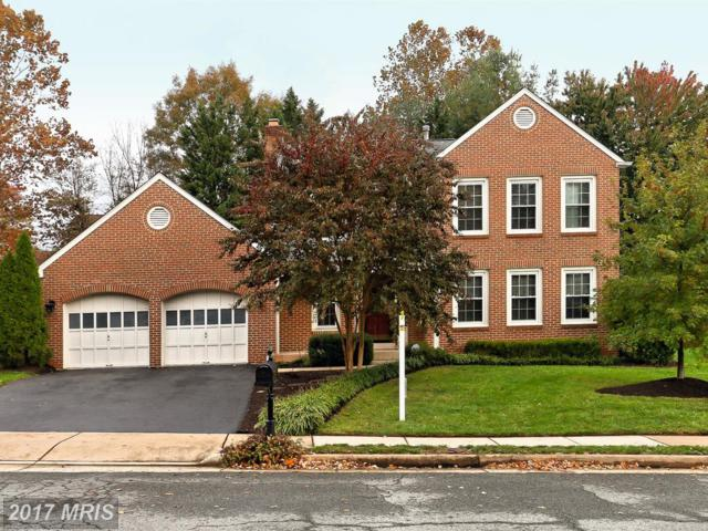 306 Tramore Court, Sterling, VA 20164 (#LO10103208) :: The Putnam Group