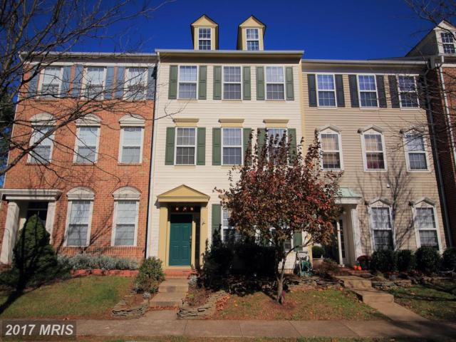 42788 Cedar Hedge Street, Chantilly, VA 20152 (#LO10104265) :: Pearson Smith Realty