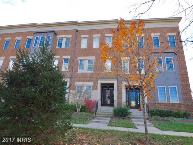 42242 Bliss Terrace, Ashburn, VA 20148 (#LO10104872) :: Wicker Homes Group