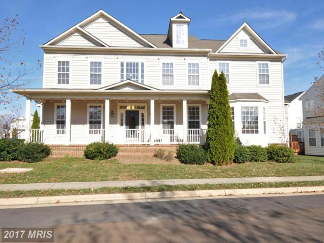 43206 Arbor Greene Way, Broadlands, VA 20148 (#LO10105013) :: Wicker Homes Group