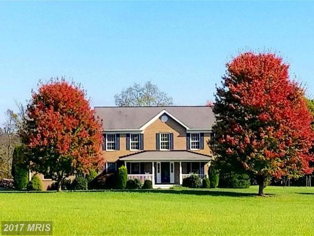 19190 Walsh Farm Lane, Bluemont, VA 20135 (#LO10105082) :: LoCoMusings