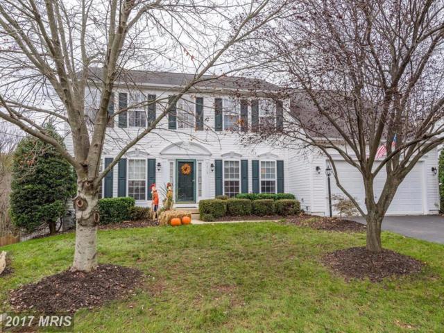 43719 Tolamac Drive, Ashburn, VA 20147 (#LO10105590) :: Provident Real Estate