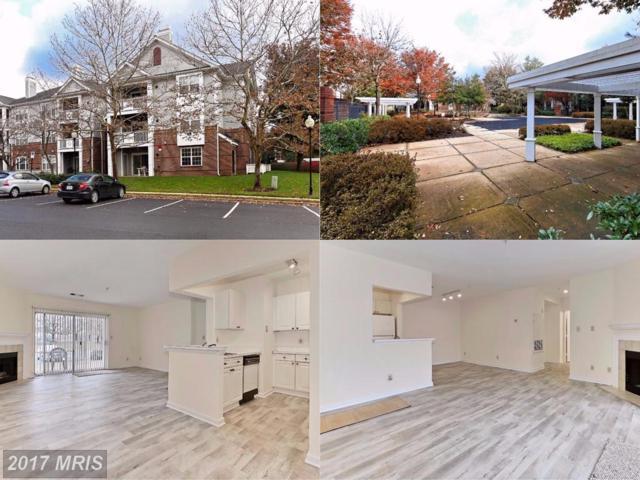 20292 Beechwood Terrace #101, Ashburn, VA 20147 (#LO10105611) :: Labrador Real Estate Team