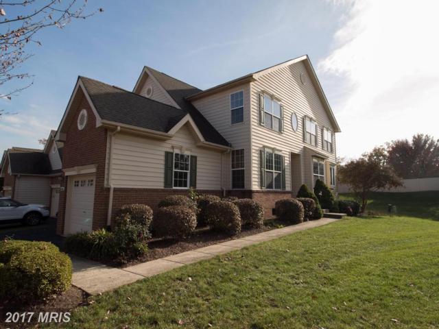 43241 Somerset Hills Terrace, Ashburn, VA 20147 (#LO10105912) :: Provident Real Estate