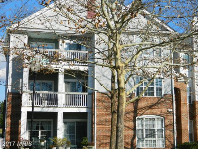 20273 Beechwood Terrace #200, Ashburn, VA 20147 (#LO10106024) :: AJ Team Realty