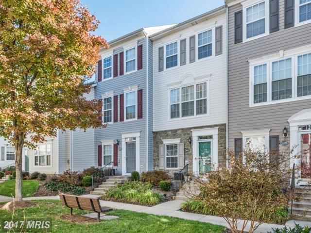 21821 Dragons Green Square, Ashburn, VA 20147 (#LO10106029) :: Provident Real Estate