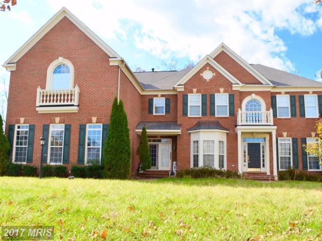 22503 Pine Top Court, Ashburn, VA 20148 (#LO10106384) :: Arlington Realty, Inc.