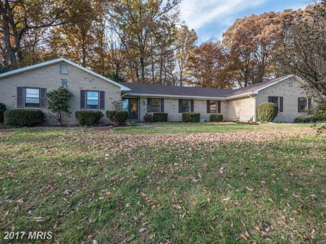 12969 Potomac Overlook Lane, Leesburg, VA 20176 (#LO10106839) :: Provident Real Estate