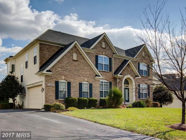 22406 Dolomite Hills Drive, Ashburn, VA 20148 (#LO10106850) :: Provident Real Estate