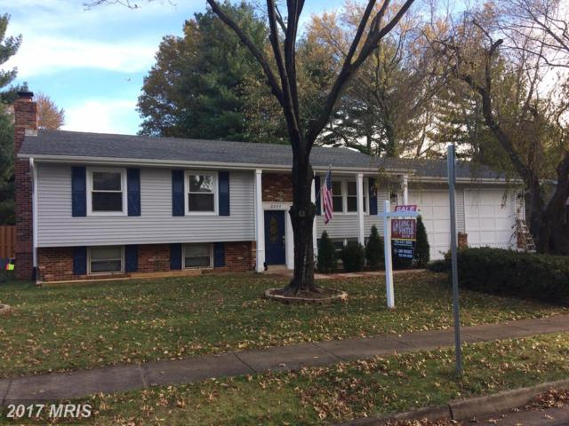 2004 Amelia Street, Sterling, VA 20164 (#LO10107052) :: Pearson Smith Realty