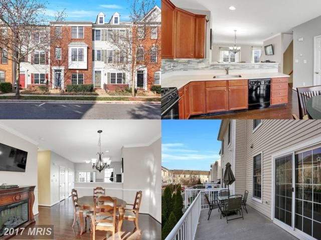 42796 Smallwood Terrace, Chantilly, VA 20152 (#LO10107524) :: Mosaic Realty Group