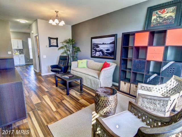 42710 Redpath Terrace, Ashburn, VA 20147 (#LO10107616) :: Provident Real Estate