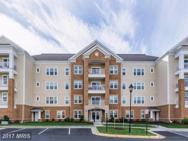20660 Hope Spring Terrace #401, Ashburn, VA 20147 (#LO10108185) :: LoCoMusings