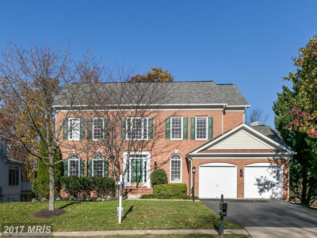43086 Northlake Boulevard, Leesburg, VA 20176 (#LO10108565) :: Labrador Real Estate Team