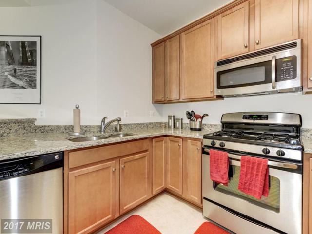 42291 San Juan Terrace 9-101, Aldie, VA 20105 (#LO10108964) :: Mosaic Realty Group