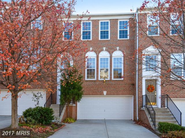 45779 Mountain Pine Square, Sterling, VA 20166 (#LO10109270) :: Mosaic Realty Group