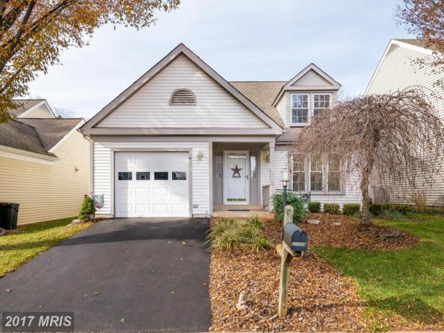 21039 Lowell Court, Sterling, VA 20164 (#LO10109402) :: Mosaic Realty Group