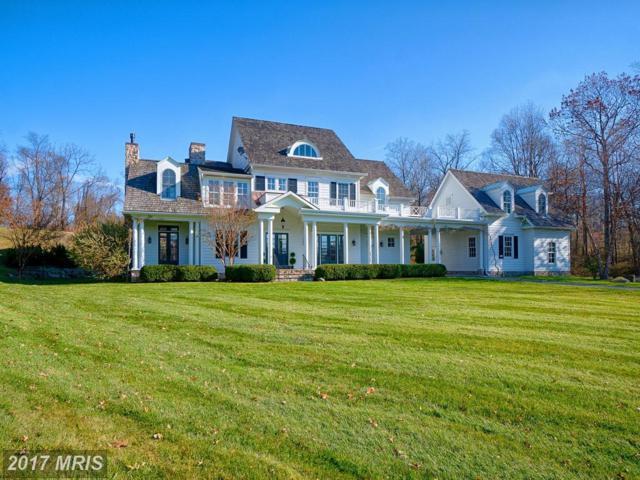 17050 Flint Farm Drive, Round Hill, VA 20141 (#LO10114967) :: LoCoMusings