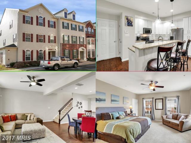 41891 Inspiration Terrace, Aldie, VA 20105 (#LO10115673) :: RE/MAX Gateway