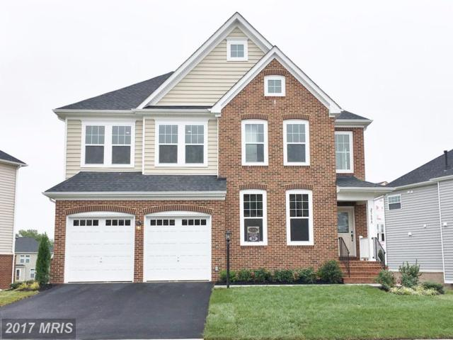 23684 Evermont Trace Drive N, Ashburn, VA 20148 (#LO10116074) :: The Belt Team