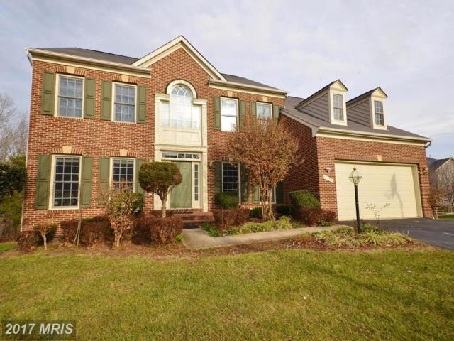 47257 Ox Bow Circle, Sterling, VA 20165 (#LO10116750) :: The Belt Team