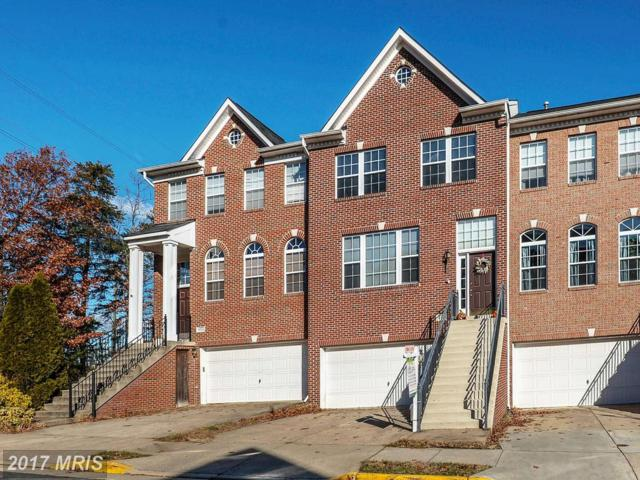 43024 Rundle Terrace, Leesburg, VA 20176 (#LO10117103) :: MidAtlantic Real Estate