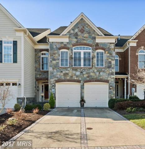 18301 Buccaneer Terrace, Leesburg, VA 20176 (#LO10117545) :: Network Realty Group