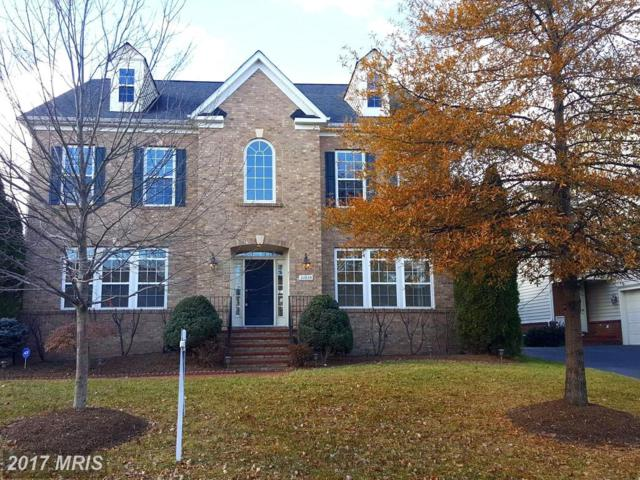 22823 Angelique Drive, Ashburn, VA 20148 (#LO10117628) :: The Belt Team