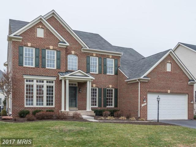 18471 Cattail Spring Drive, Leesburg, VA 20176 (#LO10117787) :: Network Realty Group