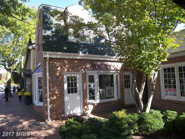 19 Washington Street, Middleburg, VA 20117 (#LO10118142) :: RE/MAX Gateway