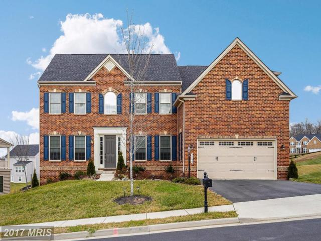 26059 Blackberry Knoll Court, Aldie, VA 20105 (#LO10118973) :: Circadian Realty Group