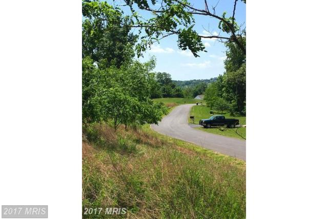 35350 Round Knoll Court, Round Hill, VA 20141 (#LO10119482) :: Network Realty Group