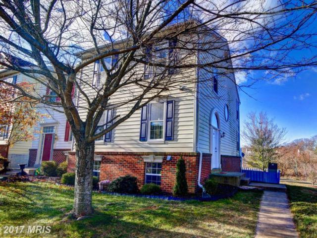 17509 Bristol Terrace, Round Hill, VA 20141 (#LO10120042) :: Arlington Realty, Inc.