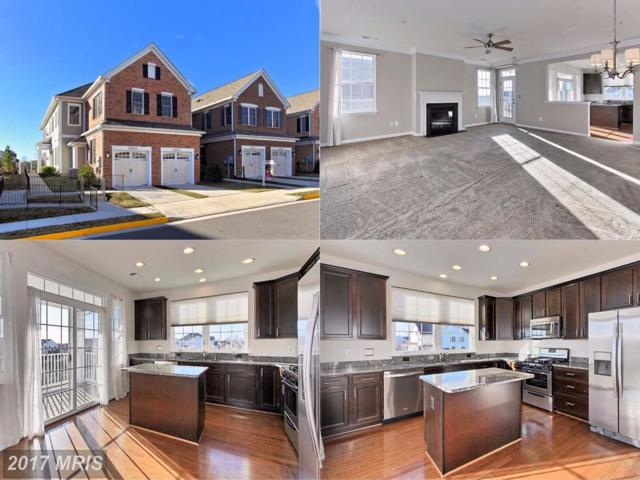 25513 Feltre Terrace #210, Chantilly, VA 20152 (#LO10120249) :: Circadian Realty Group