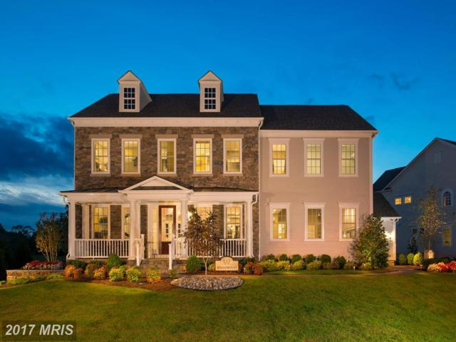 41011 Spanglegrass Court, Aldie, VA 20105 (#LO10120403) :: Circadian Realty Group