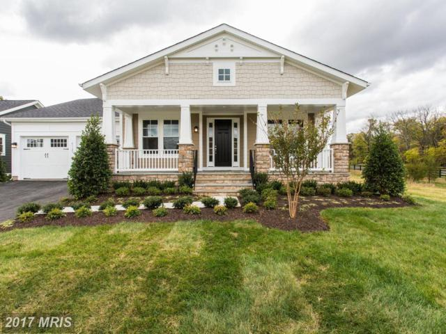 41185 Blue Oat Court, Aldie, VA 20105 (#LO10120923) :: Circadian Realty Group