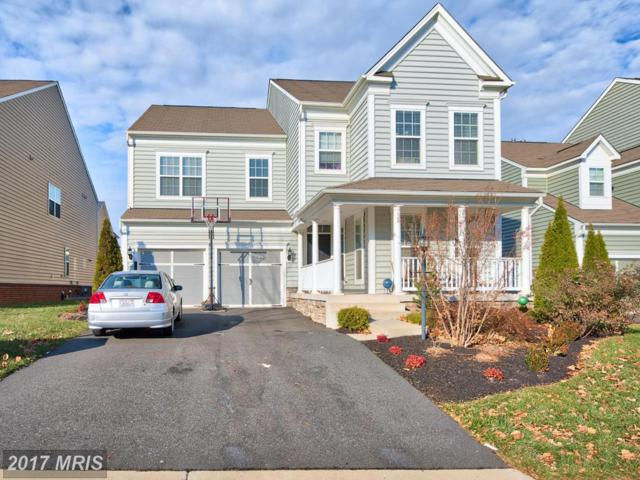 42622 Callalily Way, Ashburn, VA 20148 (#LO10121407) :: Circadian Realty Group