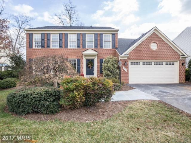 20640 Belwood Court, Sterling, VA 20165 (#LO10121572) :: Circadian Realty Group