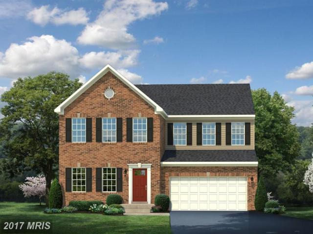 25756 Racing Sun Drive, Aldie, VA 20105 (#LO10122797) :: The Greg Wells Team