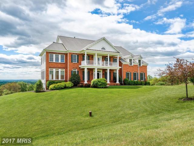 35185 Dundee Court, Round Hill, VA 20141 (#LO10124565) :: The Gus Anthony Team