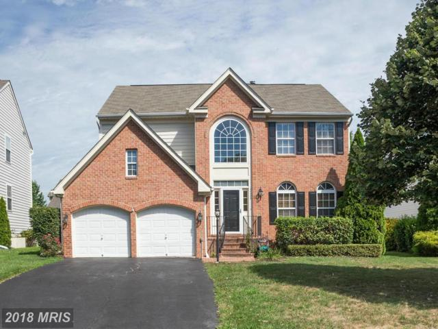 20455 Cherrystone Place, Ashburn, VA 20147 (#LO10125773) :: Pearson Smith Realty