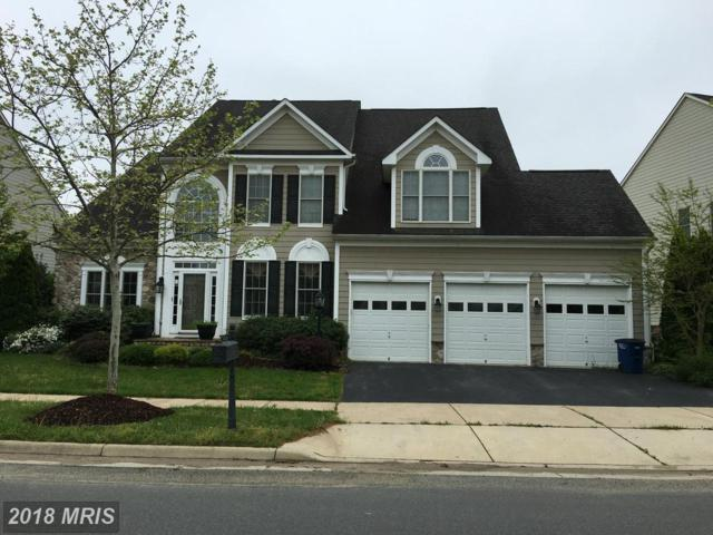 43343 Riverpoint Drive, Leesburg, VA 20176 (#LO10126135) :: The Greg Wells Team