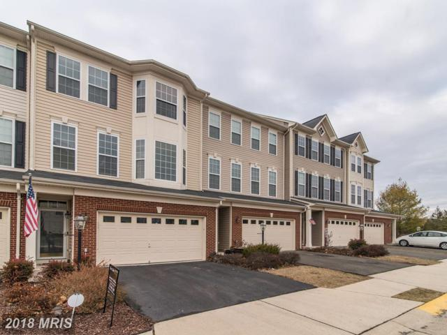 25111 Bottlebrush Terrace, Aldie, VA 20105 (#LO10127605) :: Pearson Smith Realty