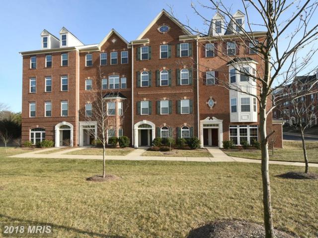 21585 Zuknick Terrace, Ashburn, VA 20147 (#LO10128293) :: Pearson Smith Realty